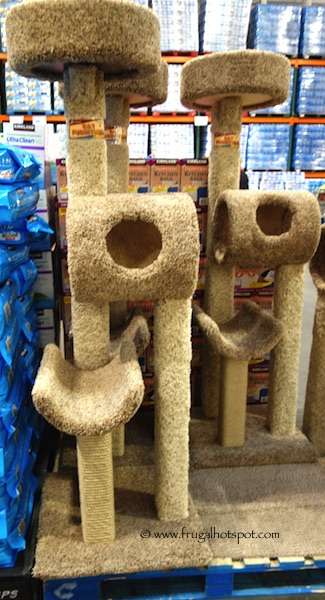 Beatrise Cat Furniture Kitty Climber Cat Tree 5.5' Costco