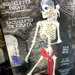 Costco Sale: Pose-n-Stay Pirate Skeleton with Parrot $29.99
