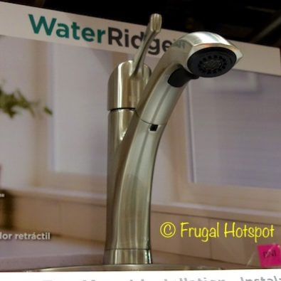 WaterRidge Seaton Pull-out Kitchen Faucet at Costco