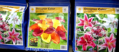 Spring Bulb Assortment  (Item #125199) at Costco