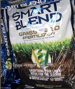 Pennington Smart Blend Lawn Seed + Fertilizer 20 lbs (Item #1286773) at Costco