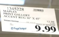Print Gallery Accent Rug Costco Sale Price