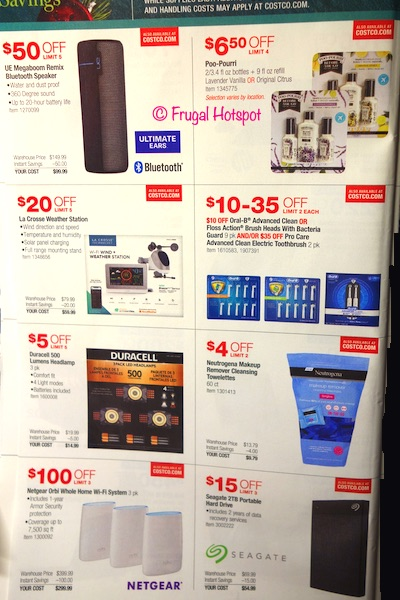 Costco 2019 Holiday Savings Book P19