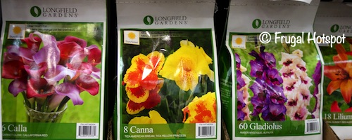 Longfield Gardens Spring Bulb Assortment Costco