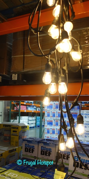 Feit Electric 48 Ft. LED String Lights Costco Display