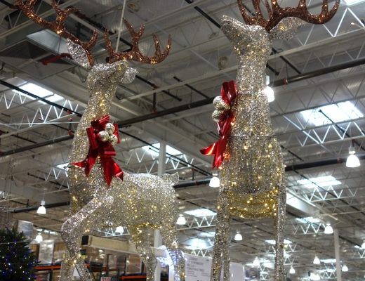 Set of 2 Lighted Deer 2020 | Costco Display