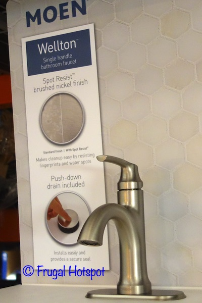Moen Wellton Single Handle Bathroom Faucet Side View | Costco Display
