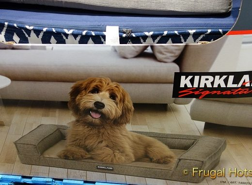 Kirkland Signature Tailored Dog Couch Bed with cute dog   Costco